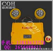 【BC5200】-【BC5200】LED双头防爆应急灯 厂家直销
