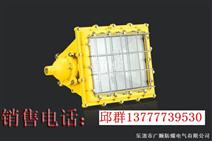 BTC6160防爆泛光灯《BTC6160厂家》《BTC6160价格》