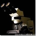 双目生物显微镜(奥林巴斯) 型号:SHD33-CX41-12C02库号:M329430