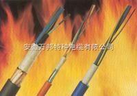 高温DJFPV| DJFVP等防腐耐油计算机电缆