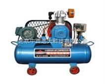 无油空压器 (配FP640火焰光度计使用)