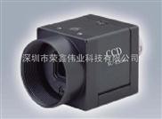 Sony索尼工業相機 CCD