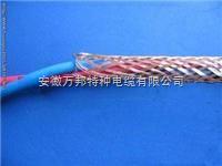WLZR-DJYY(R)P电缆价格低烟无卤计算机电缆型号