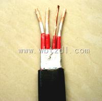 行车扁电缆