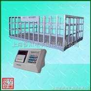 上海香川称猪电子秤