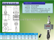 OCS-XC-DBAE  30吨直视电子吊钩称*价