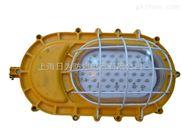 BLD51系列隔爆型高效节能灯(LED光源)