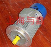 BMA紫光刹车电机供应商