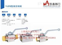 YJZQ-H25B_板式高压球阀