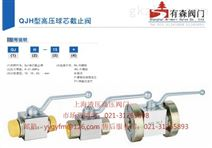 QJH-25B_板式高压球阀