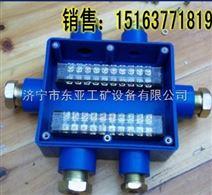 河南济源JHH-10本安电路用接线盒