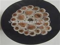 KGGP系列多芯屏蔽硅橡胶控制电缆