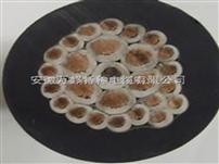 多芯屏蔽硅橡胶控制电缆