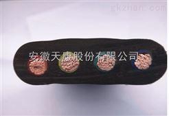 供应YZB|YZWB|YZBP扁平移动橡套电缆-天仪牌