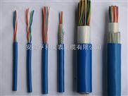 ZR-DJFGP-ZR-DJFGP硅橡胶计算机电缆单价
