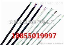 EX-HA-FPGP补偿电缆
