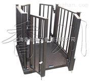 供应邢台市碳钢电子动物秤 1-5吨牲畜秤