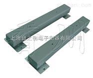 dcs-xc-x全不锈钢条型电子地磅 配不锈钢仪表