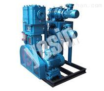 JZJP(JZJX)罗茨泵-旋片泵真空机组/真空泵原理/干式螺杆真空泵