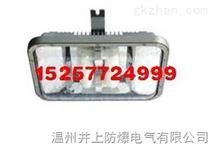 NFC9175长寿顶灯防爆视孔灯NFC9175长寿顶灯