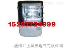 NTC9230高效中功率投光灯防炫投光灯防腐投光灯厂家