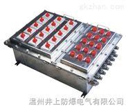 丹东BXMD-G防爆照明动力配电箱