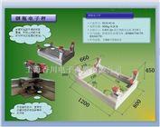 DCS-XC-G-EXIB江西防爆钢瓶电子秤
