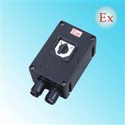 BHZ8050防爆防腐转换开关BHZ8050-32A/63A/100A防爆电源转换开关