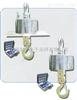 吊秤3T价格,3T吊秤报价,供应上海一台3T吊秤单价